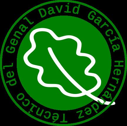 David García Hernández